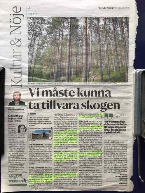 Vi måste kunna ta tillvara skogen low